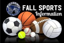 soccer ball, tennis ball, baseball, golf ball, basketball, football, volleyball, Woods Logo and text that reads Fall Sports Information